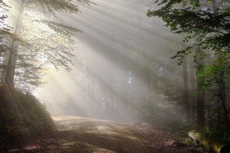 Po jutru se dan poznaje, uravnoteži životni ritam
